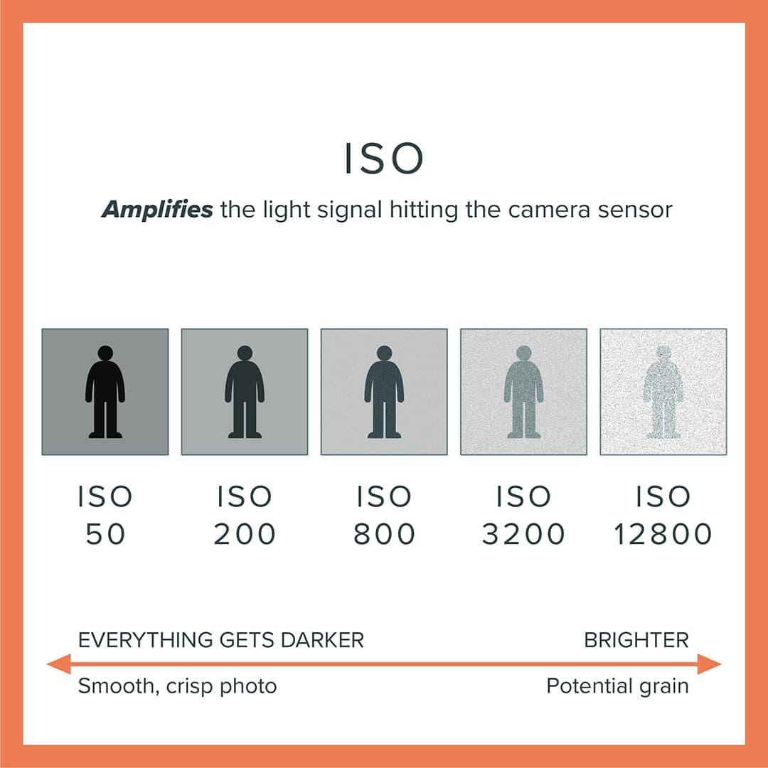 Key elements of exposure: Camera ISO explained